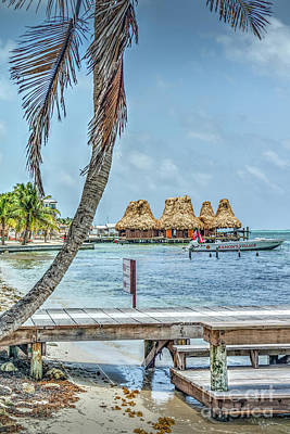 Photograph - Palapas Boat And Dock by David Zanzinger