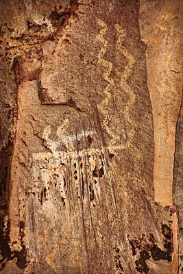 Photograph - Palatki Pictographs2 Txt by Theo O'Connor