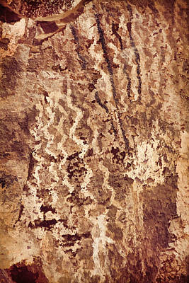 Photograph - Palatki Pictographs3 Cpg by Theo O'Connor