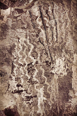 Photograph - Palatki Pictographs3 Des by Theo O'Connor