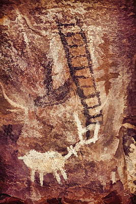 Photograph - Palatki Pictographs4 Cpg by Theo O'Connor