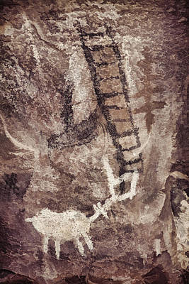 Photograph - Palatki Pictographs4 Des by Theo O'Connor