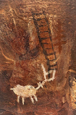 Photograph - Palatki Pictographs4 Pnt by Theo O'Connor