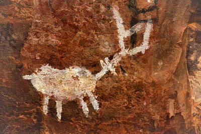 Photograph - Palatki Pictographs5 Pnt by Theo O'Connor