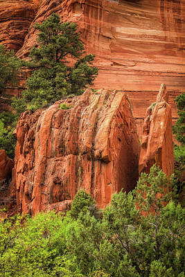 Photograph - Palatki Red Rocks by David Cote