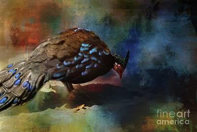 Mixed Media - Palawan Peacock-pheasant by Eva Lechner