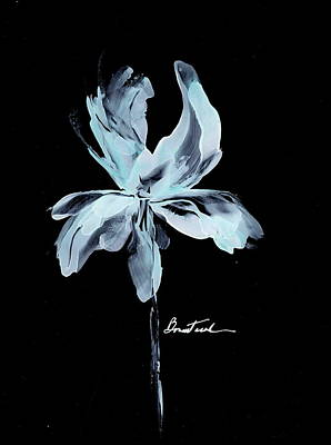 Wall Art - Drawing - Pale Blue Iris Bulb by Alexis Bonavitacola