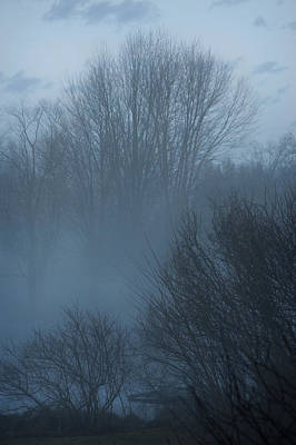 Photograph - Pale Blue Morning by Jill Love