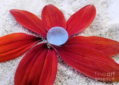 Photograph - Pale Blue Sea Glass  by Janice Drew