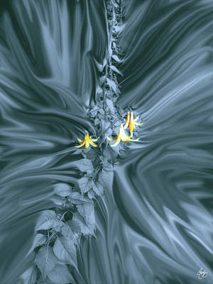 Photograph - Pale Lilies In A Platinum Storm by Wayne King