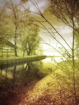 Pale Reflections Of Life Art Print