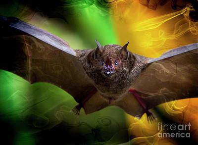 Pale Spear-nosed Bat In The Amazon Jungle Art Print by Al Bourassa