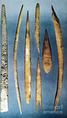 Photograph - Paleolithic Spears by Granger