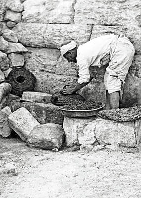 Photograph - Palestine Olive Press by Munir Alawi