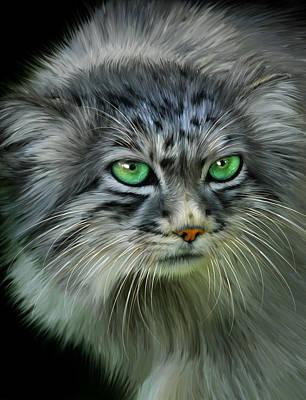 Pallas Cat Art Print by Julie L Hoddinott