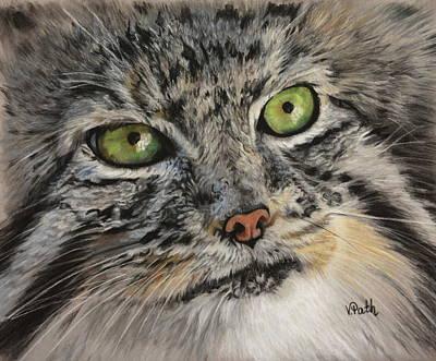 Pastel - Pallas Cat by Vicky Path