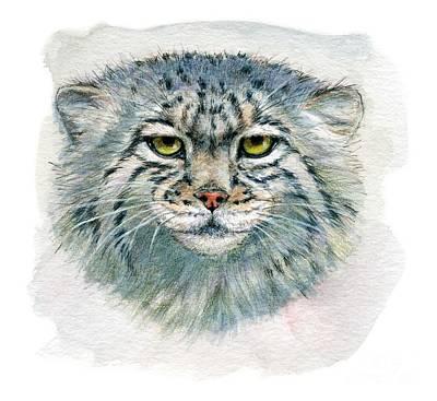 Miniature Watercolors Painting - Pallas's Cat 862 by Svetlana Ledneva-Schukina