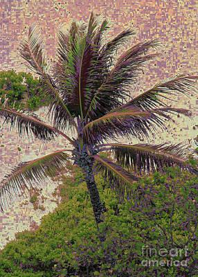 Photograph - Palm Beach by Corinne Carroll