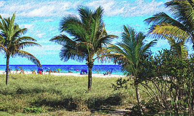 Photograph - Palm Beach In December by Susan Molnar