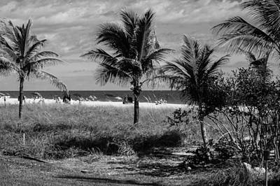 Photograph - Palm Beach Road Trip by Susan Molnar