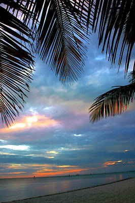 Beach Scenes Photograph - Palm Curtains by Susanne Van Hulst