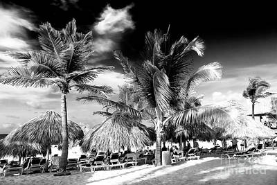 Palm Days In Punta Cana Art Print
