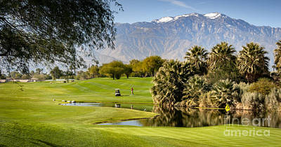 Photograph - Palm Desert Golf Course by David Zanzinger