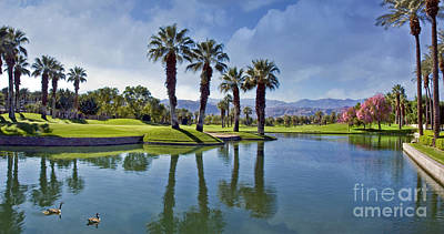 Photograph - Palm Desert Pond Mountaoins by David Zanzinger