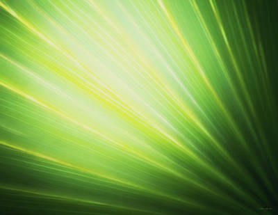 Palm Fronds Art Print
