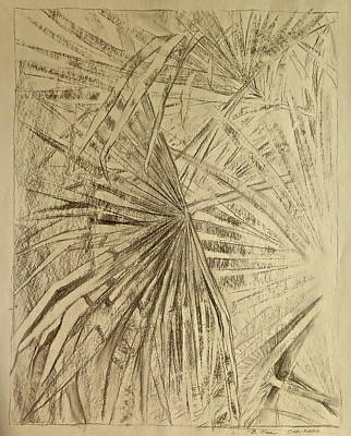 Palm Fronds In Charcoal Art Print