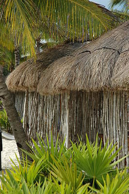 Photograph - Palm Hut by Lori Mellen-Pagliaro