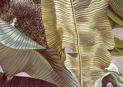 Photograph - Palm Leaves And Orange Tree by Stephen Mack
