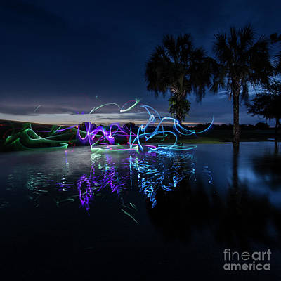 Palm Lights Art Print
