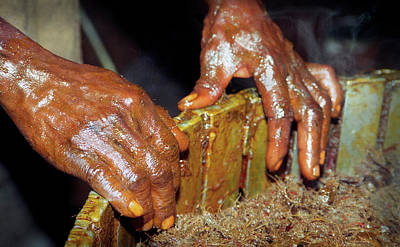 Photograph - Palm Oil Hands by Muyiwa OSIFUYE