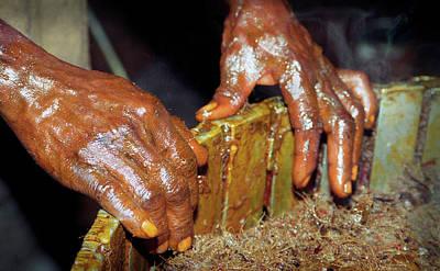 Photograph - Palm Oil Hands by Muyiwa OSIFUYE
