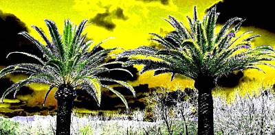 Napa Digital Art - Palm Paradise   by Will Borden