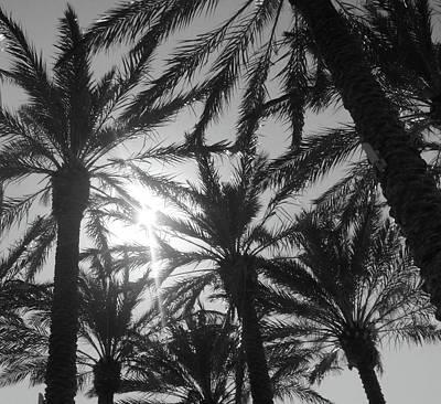 Palm Saturday Art Print by WaLdEmAr BoRrErO