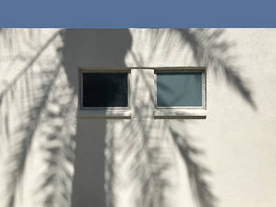 Photograph - Palm Shadow On Two Windows by Stan  Magnan