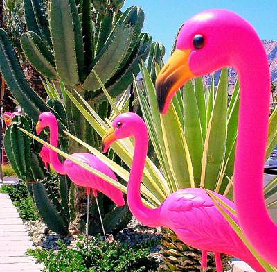 Palm Springs Flamingos 7 Art Print