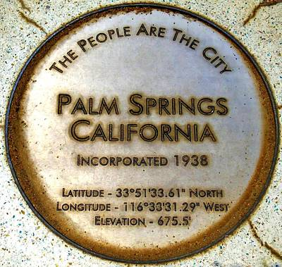 Photograph - Palm Springs Seal by Randall Weidner