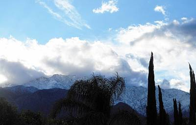 Photograph - Palm Springs Winter 2 by Ron Kandt