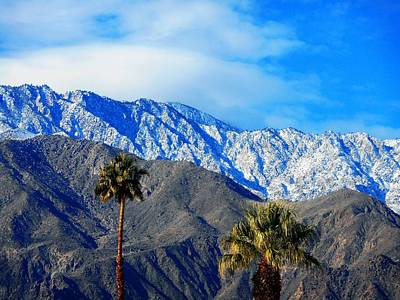 Photograph - Palm Springs Winter 3 by Ron Kandt
