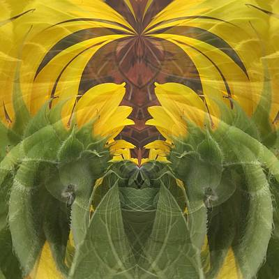 Digital Art - Palm Style Sunflower Abstract by Debra Martz