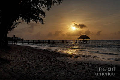 Photograph - Palm Sunrise by Dennis Hedberg