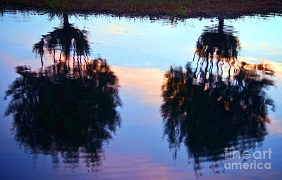 Overhang Photograph - Palm Sunset Reflection by Ray Laskowitz - Printscapes