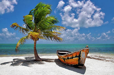 Photograph - Palm Tree And Boat Landscape In Florida Keys by Justin Kelefas