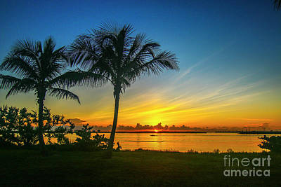Photograph - Palm Tree And Boat Sunrise by Tom Claud