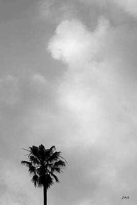 Photograph - Palm Tree And Clouds by David Gordon