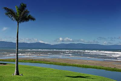 Nuevo Vallarta Photograph - Palm Tree At Beach Of Nuevo Vallarta Resort On Banderas Bay With by Reimar Gaertner