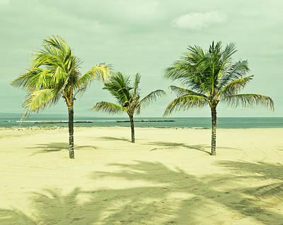 Palm Tree, Bali Art Print by Photograph by Chris Round